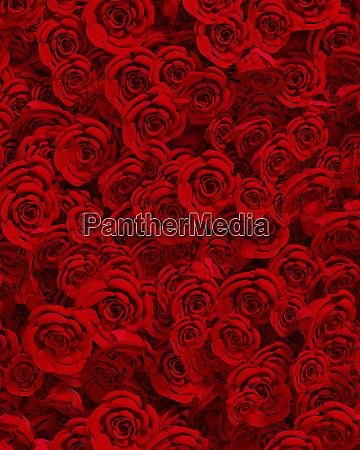 full frame flower arrangement of red