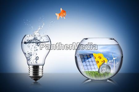 concetto di cambiamento energetico dei pesci
