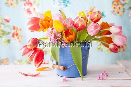 tulipani colorati in piccolo secchio vintage