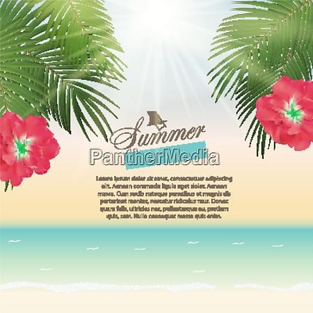 summer time palm leaf vector background