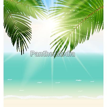 summer time palm leaf seaside vector