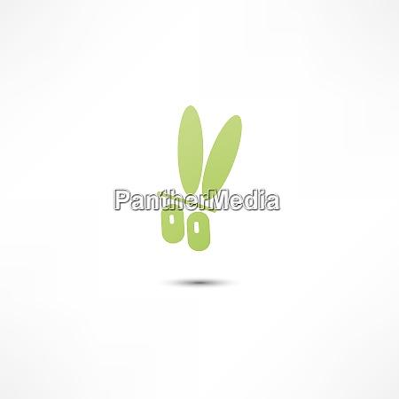 ID immagine 26464999