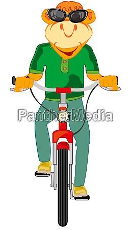 animale cartone animato sulla bicicletta impianto