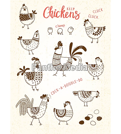 vector images of chickens hens cocks