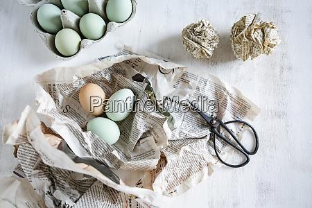 natura morta con uova giornale forbici