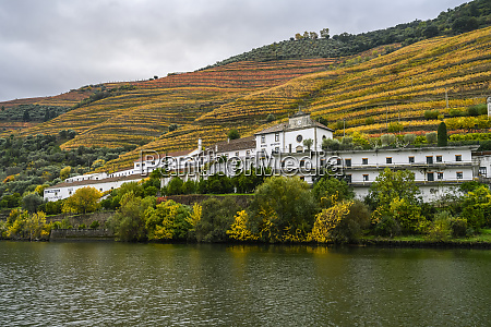 boat ride along the douro river