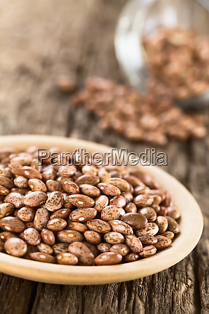 raw dried pinto beans
