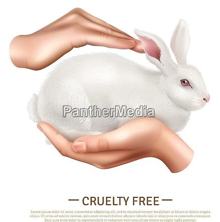cruelty free design concept with little