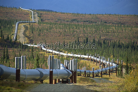 the trans alaska oil pipeline running