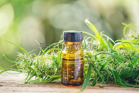 cannabidiolo cbd estratto in una bottiglia
