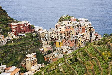 italia manarola panoramica della citta