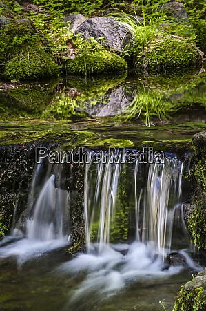 usa california yosemite national park spring