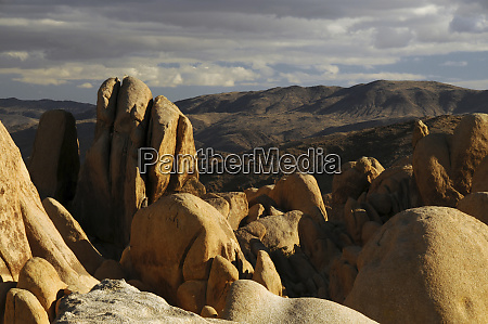 arch rock trail joshua tree national