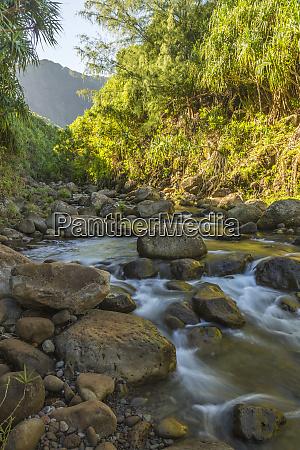 usa hawaii kauai coast stream cascade