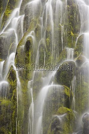 stati, uniti, oregon, willamette, national, forest., vista, dell'acqua - 27343553