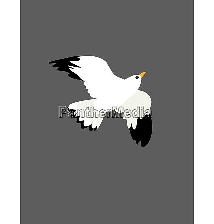 ritratto delluccello gabbiano in volo illustrazione