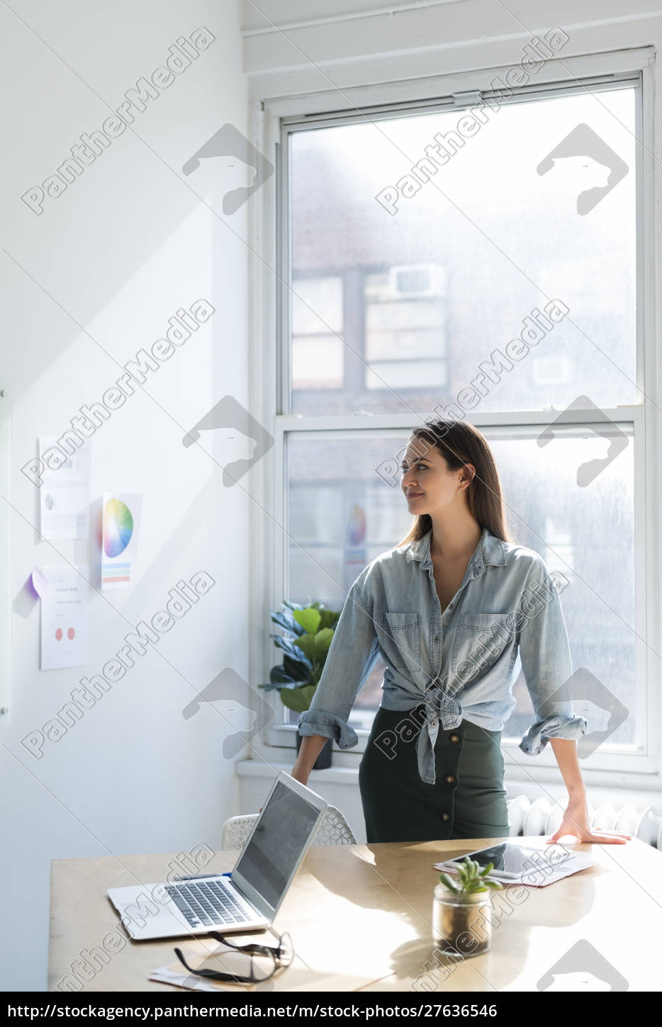 business, woman, standing, behind, office, desk - 27636546