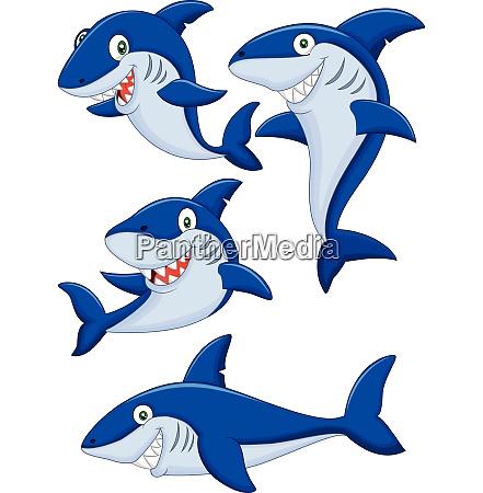 set di collezione di squali dei