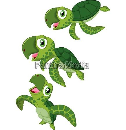 tartaruga marina dei cartoni animati