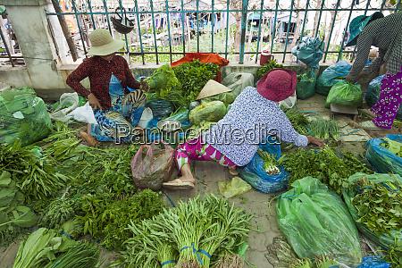 vietnam delta del mekong chau doc