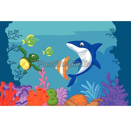cartone animato sulla vita marina