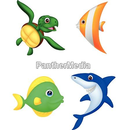 simpatici animali marini dei cartoni animati