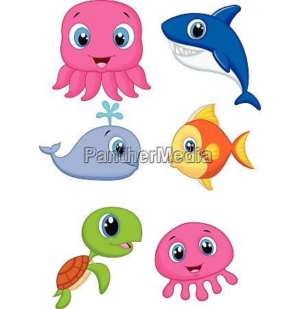 carino cartone animato animali marini