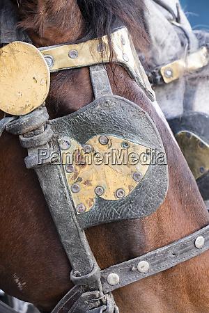 morocco marrakech horses of the tourist