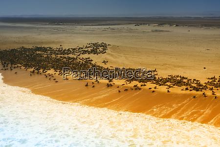 skeleton coast namibia abstract view of