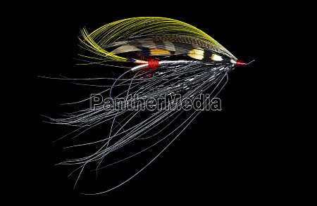 atlantic, salmon, fly, designs, 'pitcroy, fancy' - 27888107