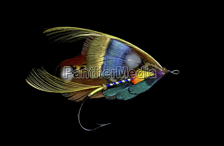 disegni, di, atlantic, salmon, fly - 27888113