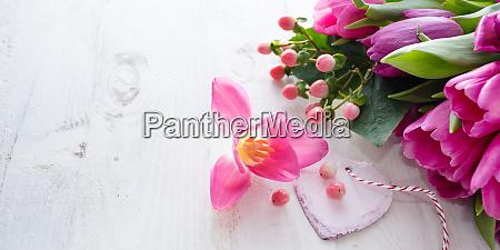 ID immagine 27961406