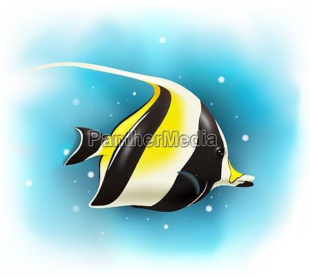 cartone animato carino pesce idolo moresco