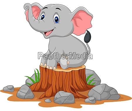cucciolo di elefante cartone animato seduto