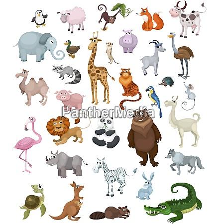 animali set