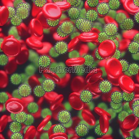 virus infezioni del sangue virus covid