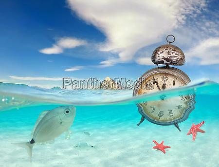 oceano turchese con vista subacquea e