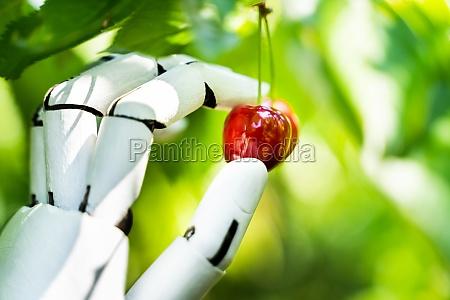 ai farmer assistant picking fresh fruit