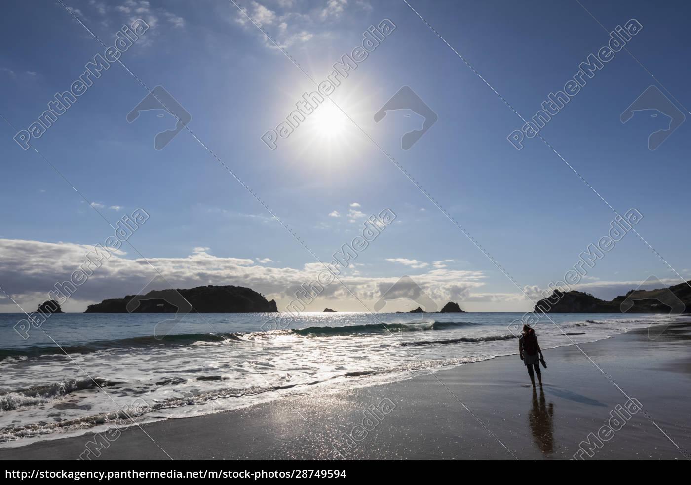 nuova, zelandia, isola, del, nord, waikato, sole, che, brilla - 28749594