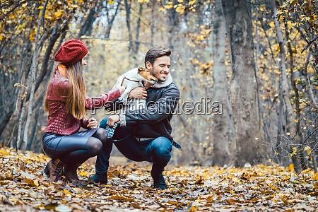 cane parco boschi foresta autunno donna