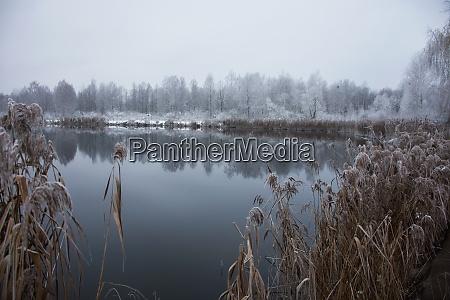 paesaggio gelido invernale