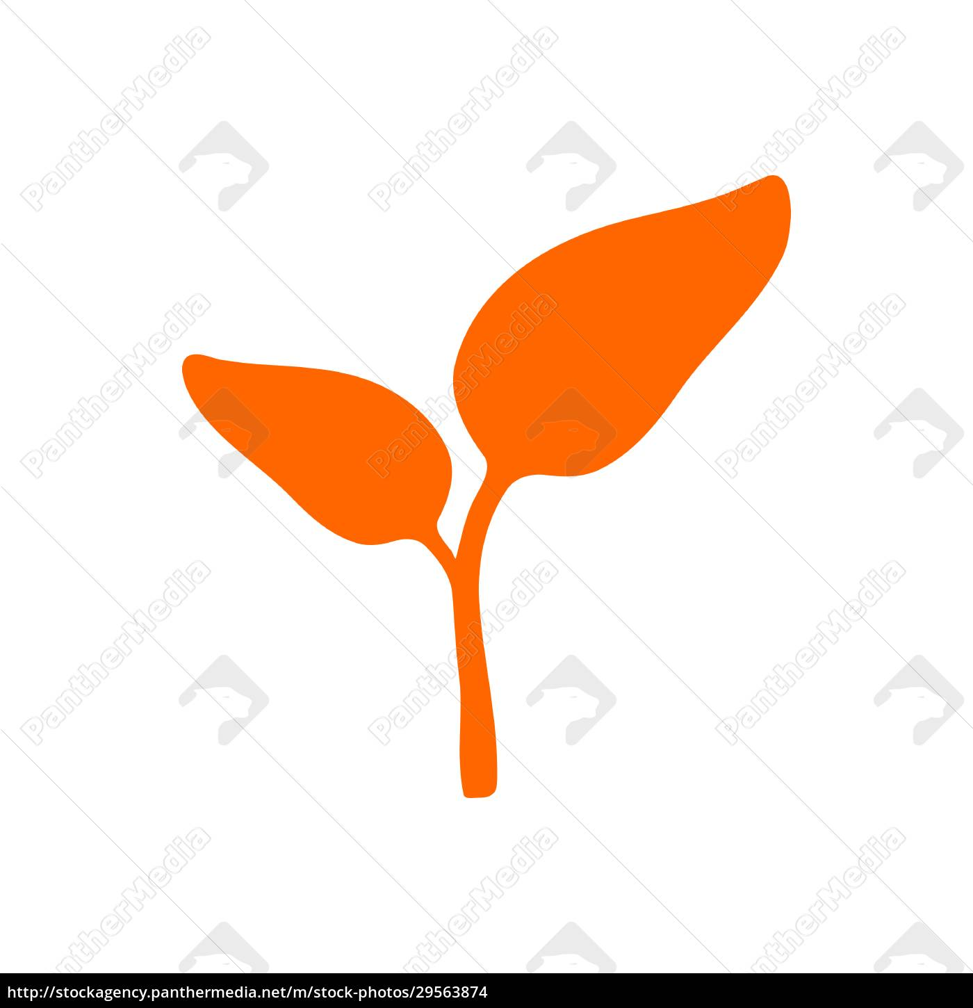 plant, and, background - 29563874