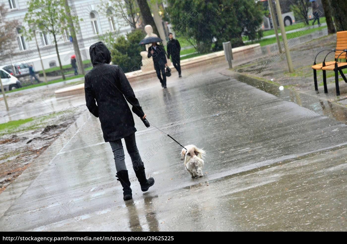 regenwetter, in, der, stadt, (linz, , oberösterreich, - 29625225