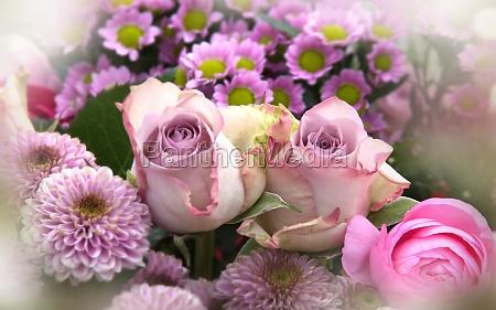 fiori rosa giorno madri natura morta