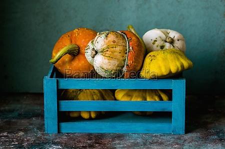 zucche, decorative, in, una, scatola, blu - 29884616
