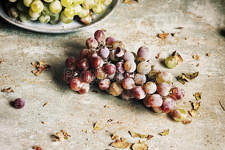natura, morta, con, uva, e, foglie - 29887194