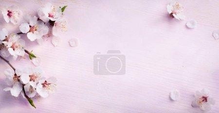 ID immagine B137623752