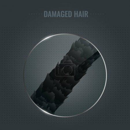 ID immagine B183584788