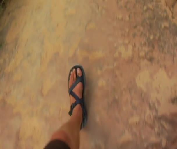 Video B33891643