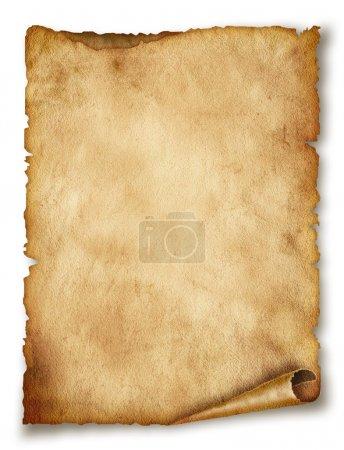 ID immagine B20086229